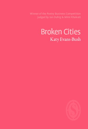 evansbush-cities-webcover